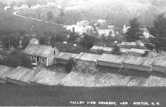 Valley View hennery